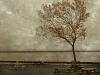 autumn-at-lake-michigan-by-eric-vondy